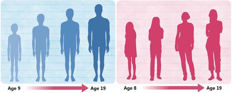 Familiarize body-size
