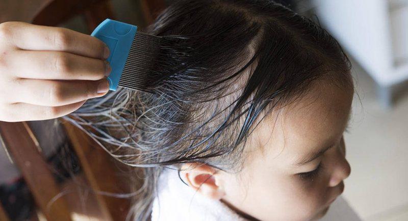 kids comb