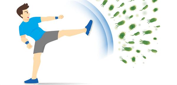 Immunity Increase Activities