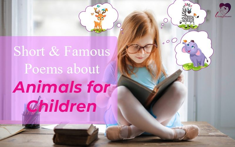 Short Poems About Animals And Children